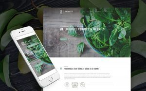 Vegetarian Restaurant WordPress Website